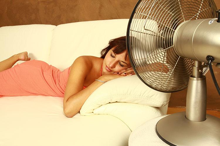 Best quiet fan